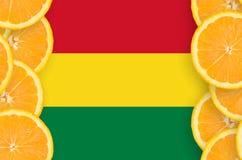 Bolivia flagga i vertikal ram för citrusfruktskivor royaltyfria bilder