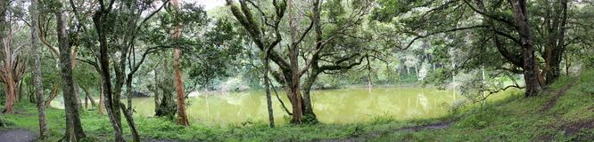 bolivia grön lakepanorama Arkivfoton