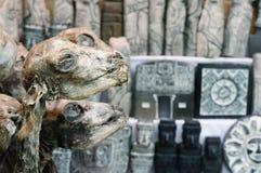 Bolivia, La Paz, Witches Market Royalty Free Stock Photos