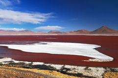 Bolivia, the most beautifull Andes in America Royalty Free Stock Photos