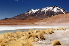 Bolivia, the most beautifull Andes in America Stock Images