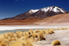 Bolivia, the most beautifull Andes in South America Stock Photos