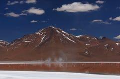 Bolivia,, Reserva Nacional de Fauna Andina Eduardo Avaroa Stock Images