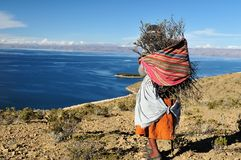 Bolivia Titicaca lake Stock Images