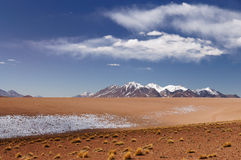 Bolivian andes Royalty Free Stock Image