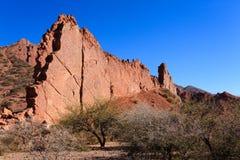 Bolivian canyon near Tupiza,Bolivia Stock Photos