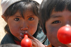 Bolivian children Stock Images