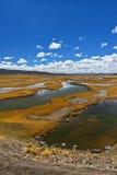 Bolivian desert landscape Stock Images