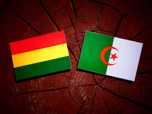 Bolivian flag with Algerian flag on a tree stump isolated Royalty Free Stock Images