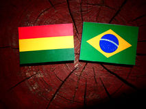 Bolivian flag with Brazilian flag on a tree stump isolated Stock Image