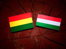 Bolivian flag with Hungarian flag on a tree stump isolated Stock Photos