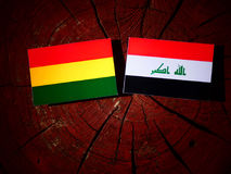 Bolivian flag with Iraqi flag on a tree stump isolated Stock Photography