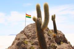 bolivian flag on Isla de Pescadores, Salt lake Uyuni in Bolivia royalty free stock photos