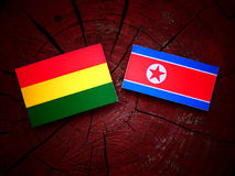 Bolivian flag with North Korean flag on a tree stump  Royalty Free Stock Photos