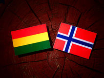 Bolivian flag with Norwegian flag on a tree stump isolated Royalty Free Stock Photography