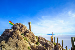 Bolivian flag on a rock of island incahuasi by Uyuni salt lake in Bolivia. View on bolivian flag on a rock of island incahuasi by Uyuni salt lake in Bolivia Stock Photo