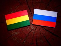 Bolivian flag with Russian flag on a tree stump  Stock Photos