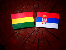 Bolivian flag with Serbian flag on a tree stump isolated Royalty Free Stock Photography