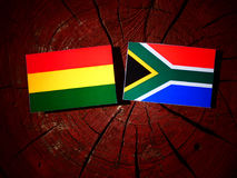 Bolivian flag with South African flag on a tree stump isolated Royalty Free Stock Photography