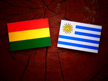 Bolivian flag with Uruguaian flag on a tree stump isolated Stock Image