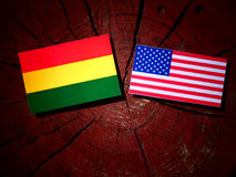 Bolivian flag with USA flag on a tree stump  Royalty Free Stock Photos