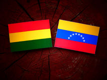 Bolivian. Flag with Venezuelan flag on a tree stump Royalty Free Stock Image