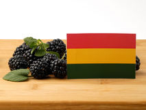 Bolivian flag on a wooden panel with blackberries isolated on a Stock Images