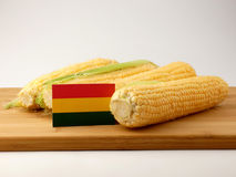 Bolivian flag on a wooden panel with corn isolated on a white ba Royalty Free Stock Photo