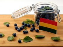 Bolivian flag on a wooden plank with blueberries  on whi Royalty Free Stock Photo