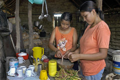 Bolivian girl and young woman cooking in kitchen. Bolivia: The young women are sisters and the older sister teaches the young how to cook, because in the Stock Photos