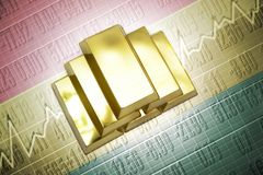 Bolivian gold reserves Royalty Free Stock Image