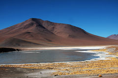 Bolivian lagoon Royalty Free Stock Photo