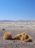 Bolivian Landscape. Bolivia, Potosi Departmant, Sur Lipez Province, Landscape of the Eduardo Avaroa Andean Fauna National Reserve Stock Images