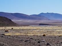 Bolivian Landscape. Bolivia, Potosi Departmant, Sur Lipez Province, Landscape of the Eduardo Avaroa Andean Fauna National Reserve Royalty Free Stock Photo