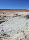 Bolivian Landscape. Bolivia, Potosi Departmant, Sur Lipez Province, Eduardo Avaroa Andean Fauna National Reserve, Landscape of the Geisers Sol de Manana Stock Photos