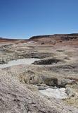 Bolivian Landscape. Bolivia, Potosi Departmant, Sur Lipez Province, Eduardo Avaroa Andean Fauna National Reserve, Landscape of the Geisers Sol de Manana Stock Images