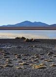 Bolivian Landscape. Bolivia, Potosi Departmant, Sur Lipez Province, Eduardo Avaroa Andean Fauna National Reserve, Landscape of the Hedionda Lagoon Royalty Free Stock Photography