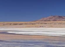 Bolivian Landscape. Bolivia, Potosi Departmant, Sur Lipez Province, Eduardo Avaroa Andean Fauna National Reserve, Landscape of the Laguna Colorada Royalty Free Stock Photos