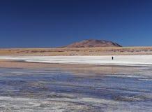 Bolivian Landscape. Bolivia, Potosi Departmant, Sur Lipez Province, Eduardo Avaroa Andean Fauna National Reserve, Landscape of the Laguna Colorada Stock Photos