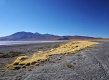Bolivian Landscape Royalty Free Stock Photography