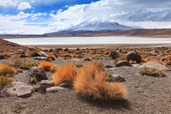 Bolivian landscape Royalty Free Stock Image