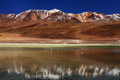Bolivian mountain´s Stock Photography