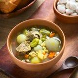 Bolivian Soup Chairo de Tunta Royalty Free Stock Image