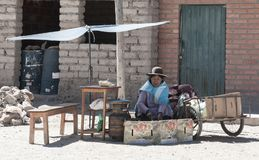 Bolivian woman along the road to Oruro - Bolivia stock image