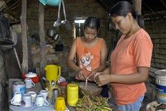 Bolivianisches Mädchen und junge Frau, die in der Küche kocht stockfotos