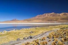 Boliviansk öken Royaltyfri Bild
