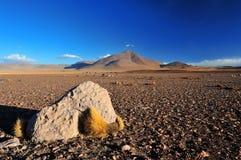 Boliviansk altiplano Arkivfoton