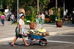 Bolivianskt folk som säljer frukter på stadsgator Arkivfoto