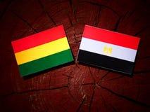 Boliwijki flaga z egipcjanin flaga na drzewnym fiszorku odizolowywającym obrazy stock
