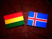 Boliwijki flaga z Islandzką flaga na drzewnym fiszorku odizolowywającym zdjęcia stock
